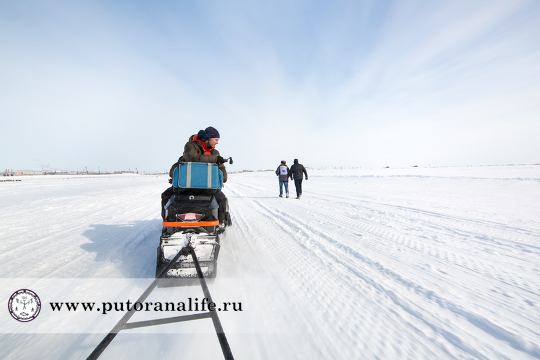 Северный транспорт